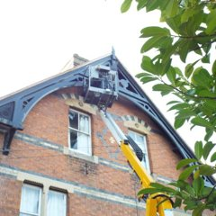 A-M-Pest-Control-pigeon-proofing-gloucester