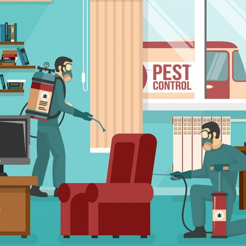 Advertisement Poster of pest control service team at work spraying insecticide in living room